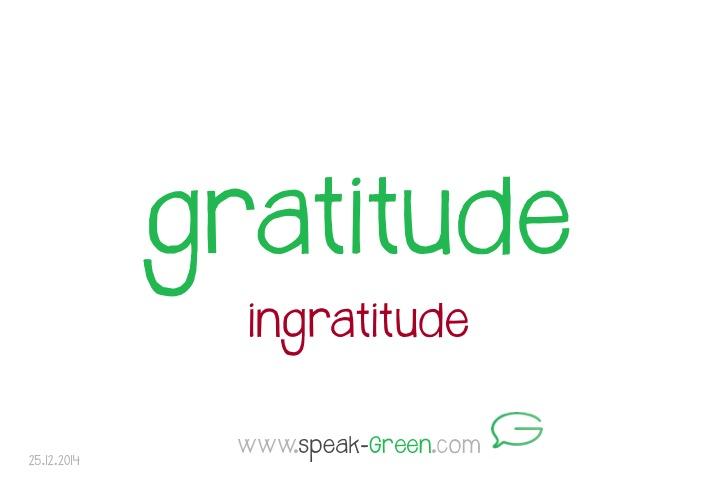 2014-12-25 - gratitude