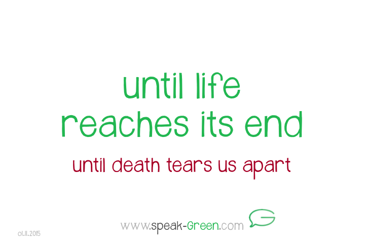 2015-11-01 - until life reaches its end