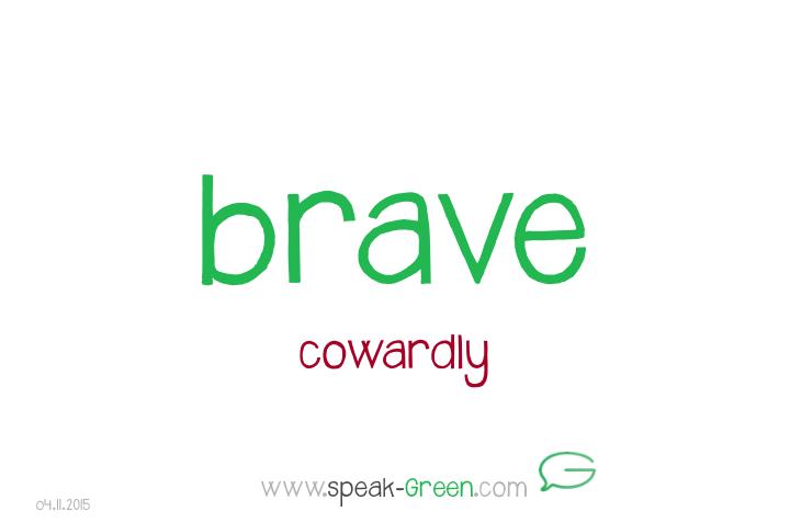 2015-11-04 - brave