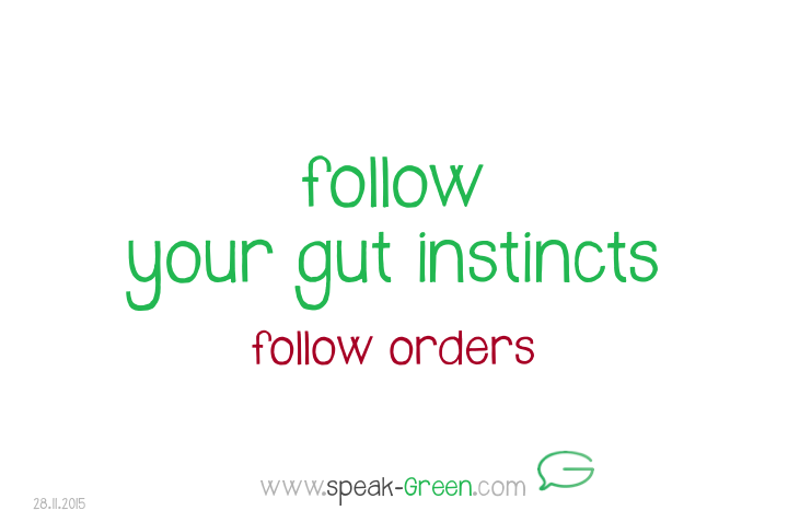 2015-11-28 - follow your gut instincts