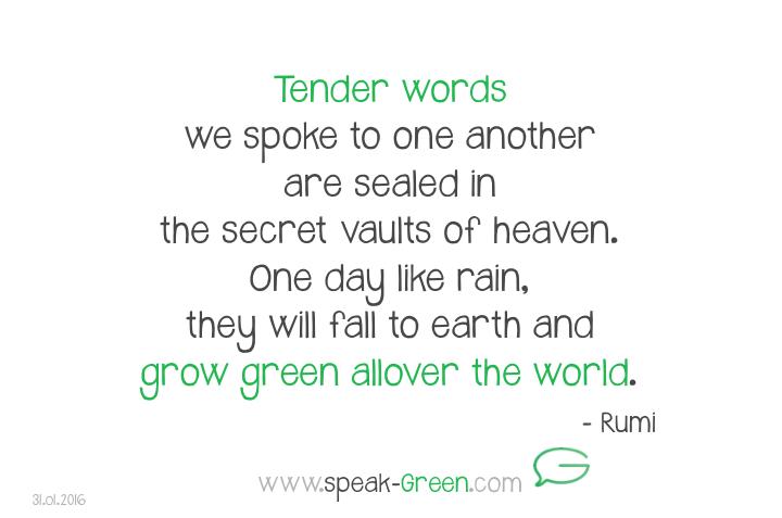2016-01-31 - tender words