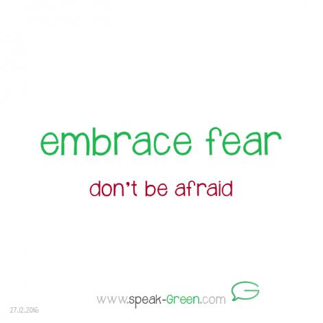 2016-12-27 - embrace fear