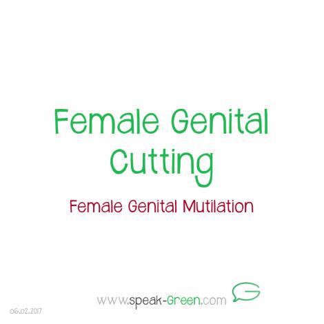 2017-02-06 - female genital cutting