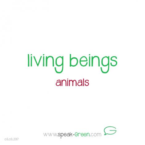 2017-03-03 - living beings