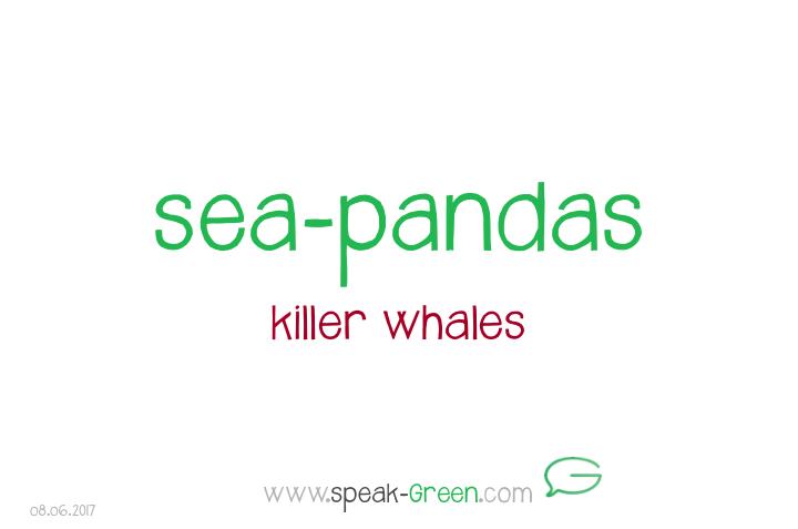 2017-06-08 - sea-pandas