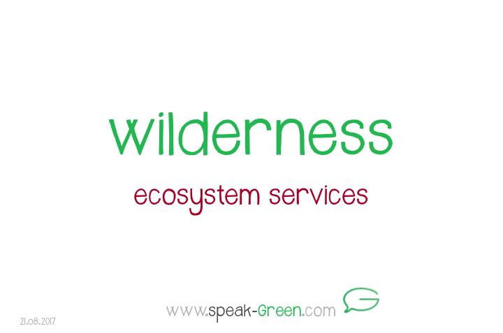 2017-08-21 - wilderness