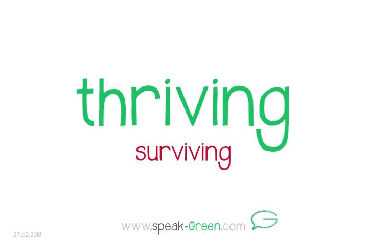2018-02-27 - thriving