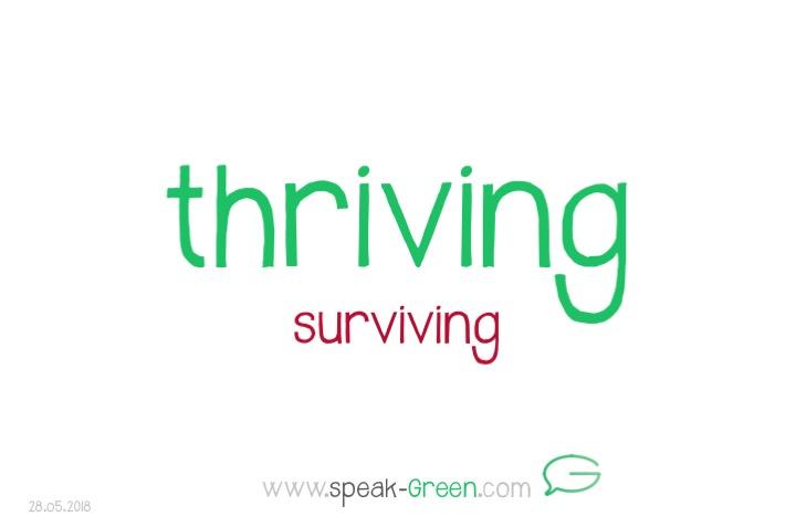 2018-05-28 - thriving