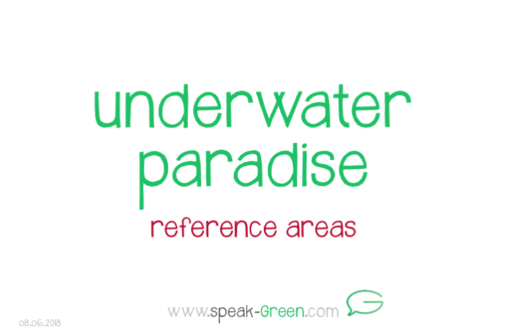 2018-06-08 - underwater paradise